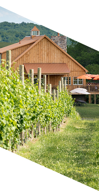 There is close access to local wineries in northern virginia near national landing.